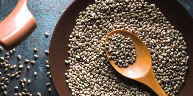 Look at Hemp and its Dietary Hemp Seed Protein