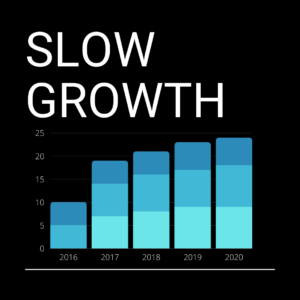 Slow growth in Business
